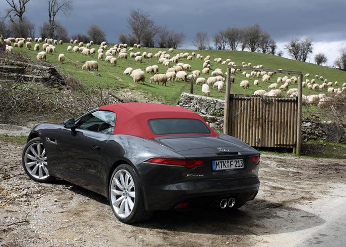 Perfect Hire Jaguar F Type